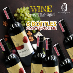 6 BOTTLES PROMOTION -  Promesa Premium Selection- Bodeagas de Aguirre - Chile