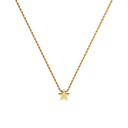 Star Necklace (6025655582870)