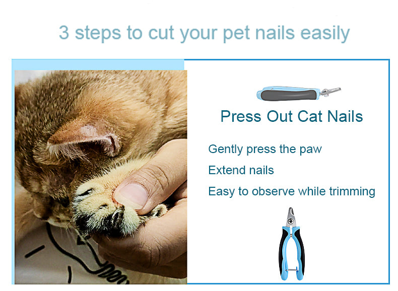 Pet nail clipper use tips