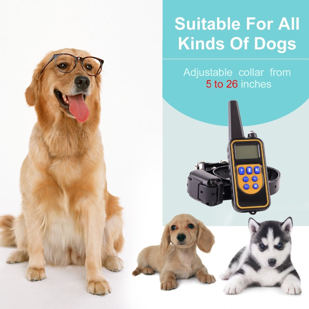 Adjustable training collar for dogs