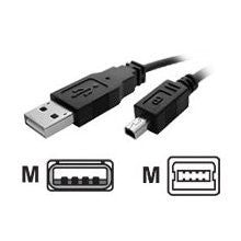 USB cable - 4 pin USB Type A - M - mini-USB Type B - M - 10 ft