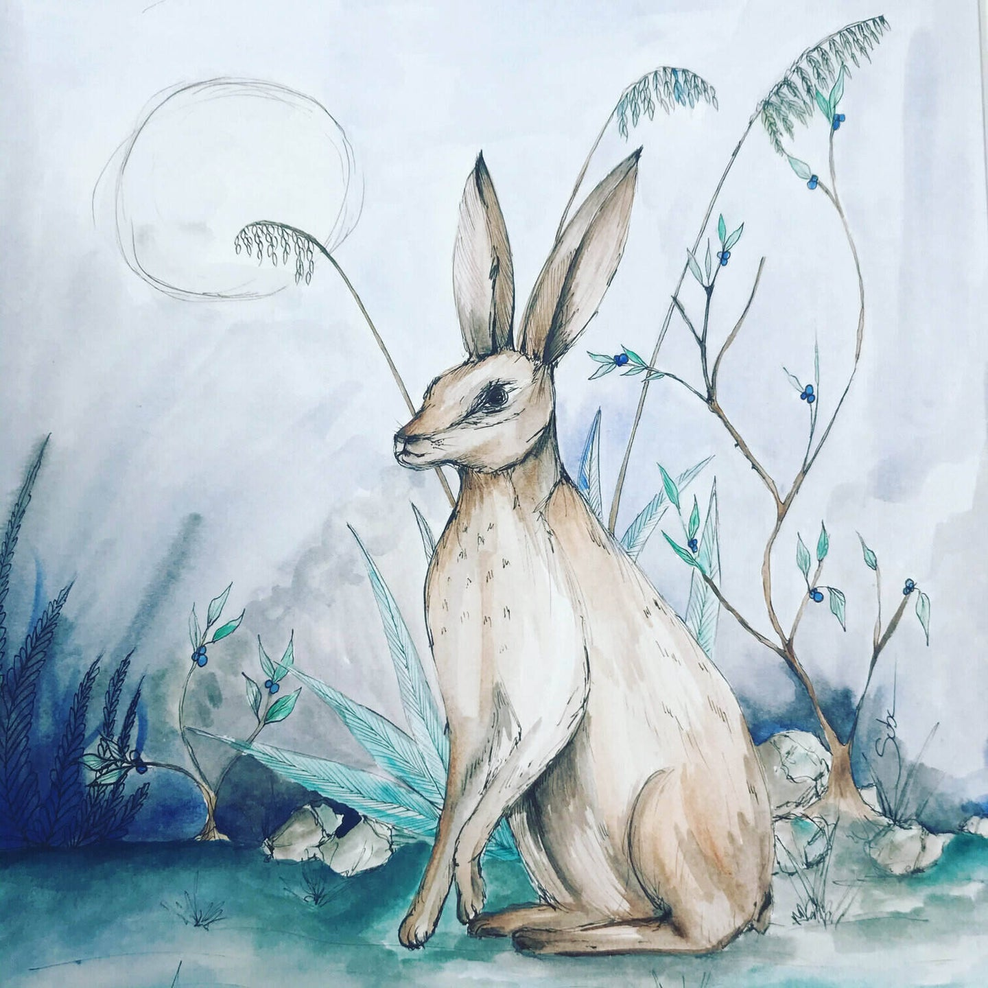 Moonlight Hare a watercolor painting by Suba