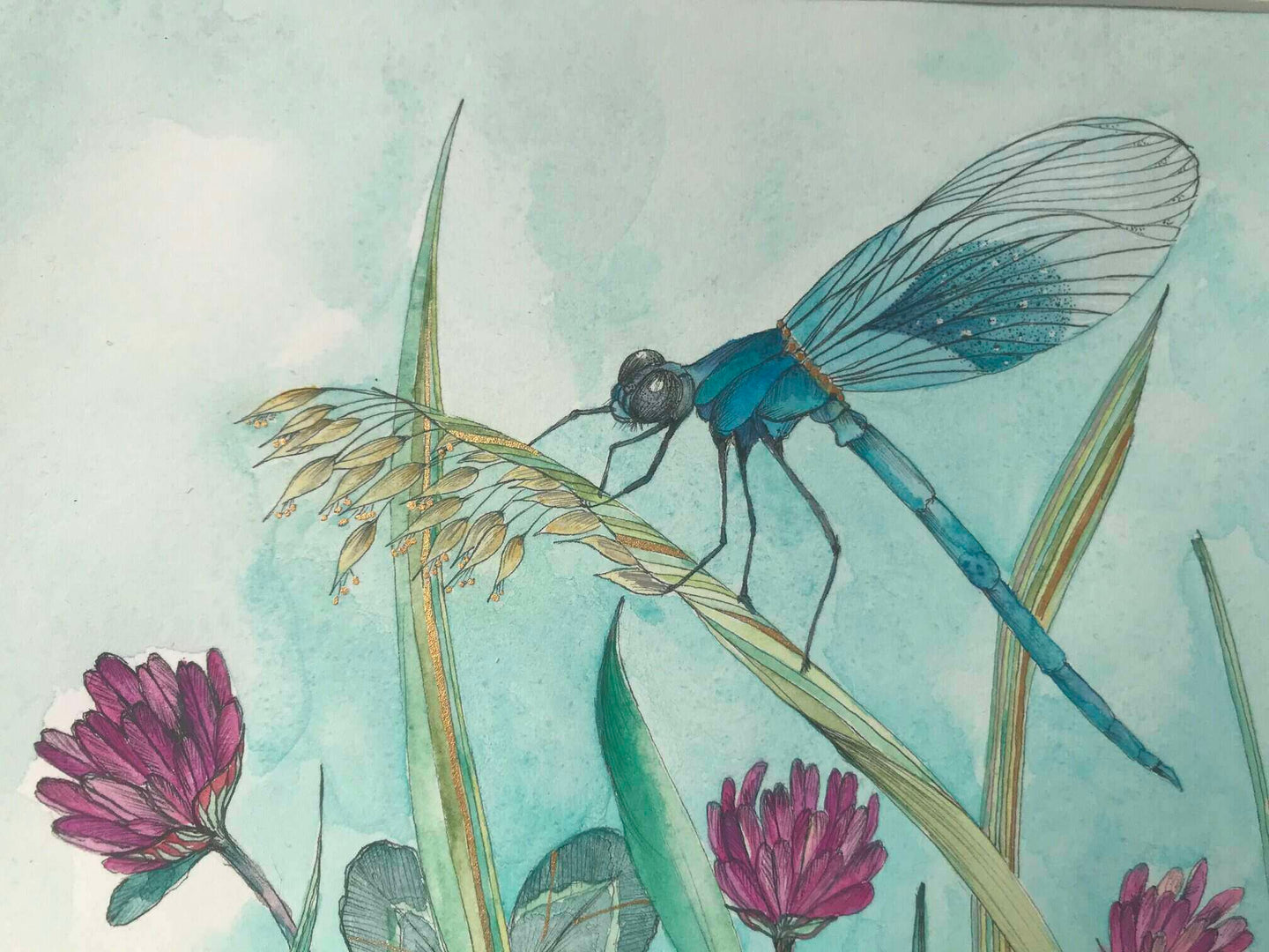 Watercolor Painting of Teal Damselfly sitting on a blade of grass surrounded by Red Clover