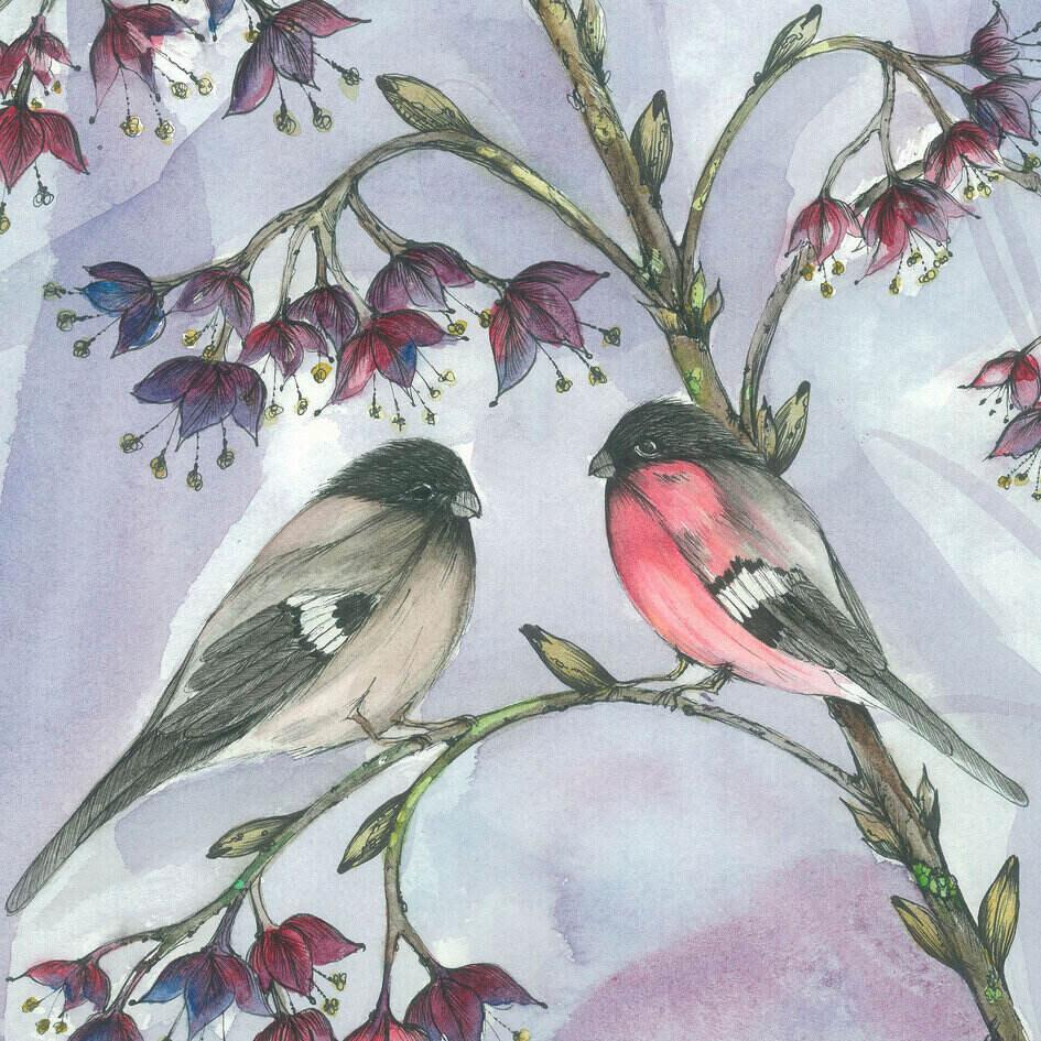 Bullfinch Couple Art Print Suba