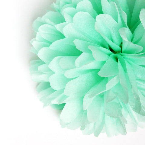 Party Decorative Tissue Pom Pom Mint Green (25cm)