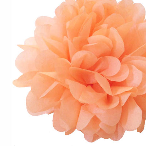 Party Decorative Tissue Pom Pom Peach Salmon Pink (25cm)
