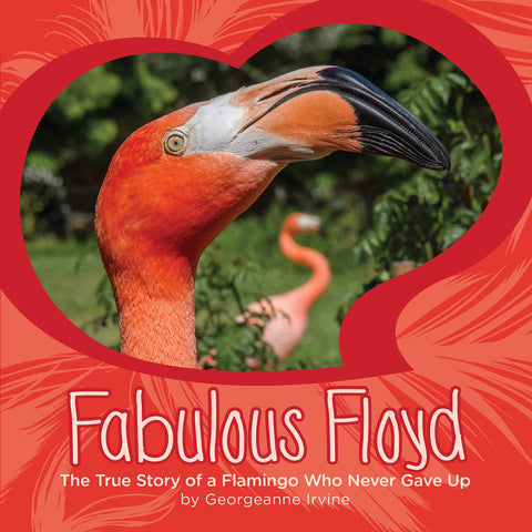 Fabulous Floyd: The True Story of a Flamingo Who Never Gave Up