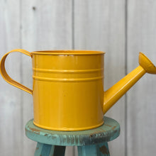 Load image into Gallery viewer, Watering Can Pot