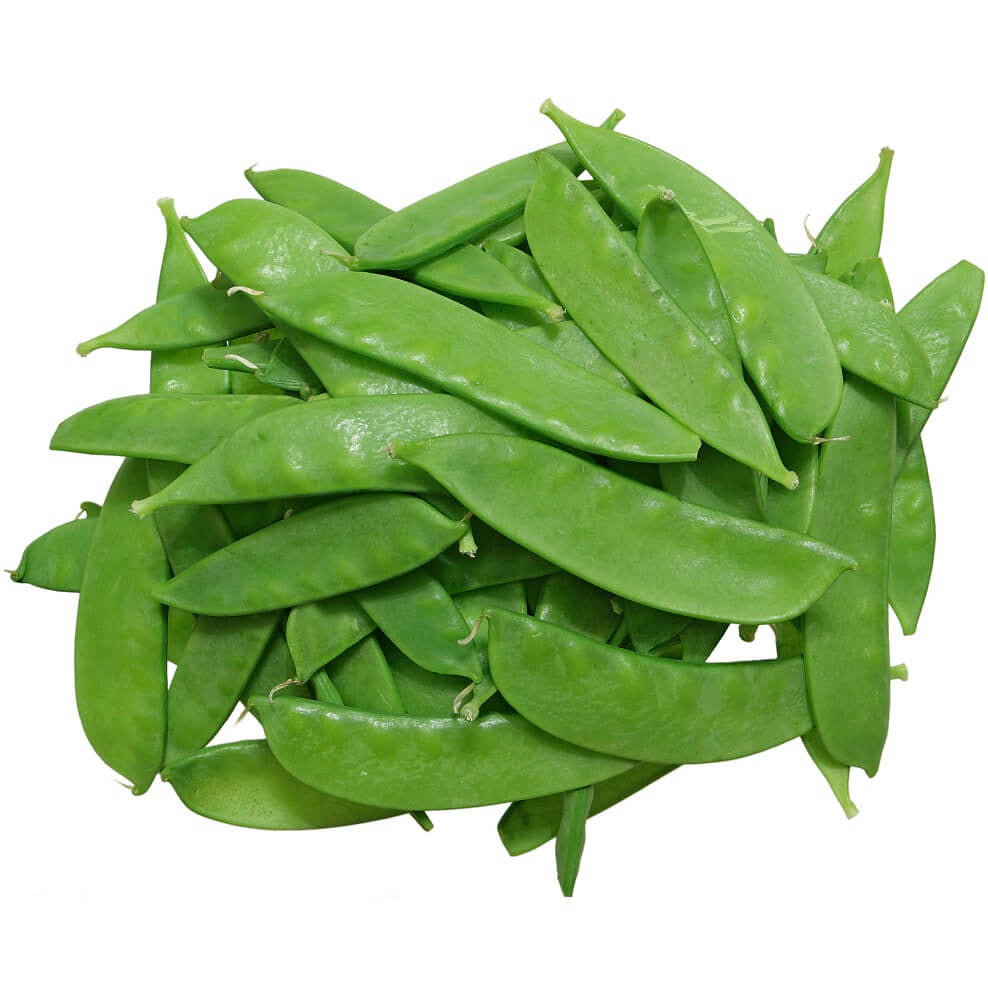 Pea Oregon Sugar Pod (Organic)