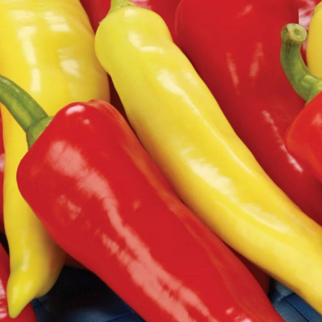 Sow Easy Sweet Banana Pepper