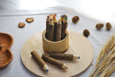 Tree Colour Pencil Set by Qtoys