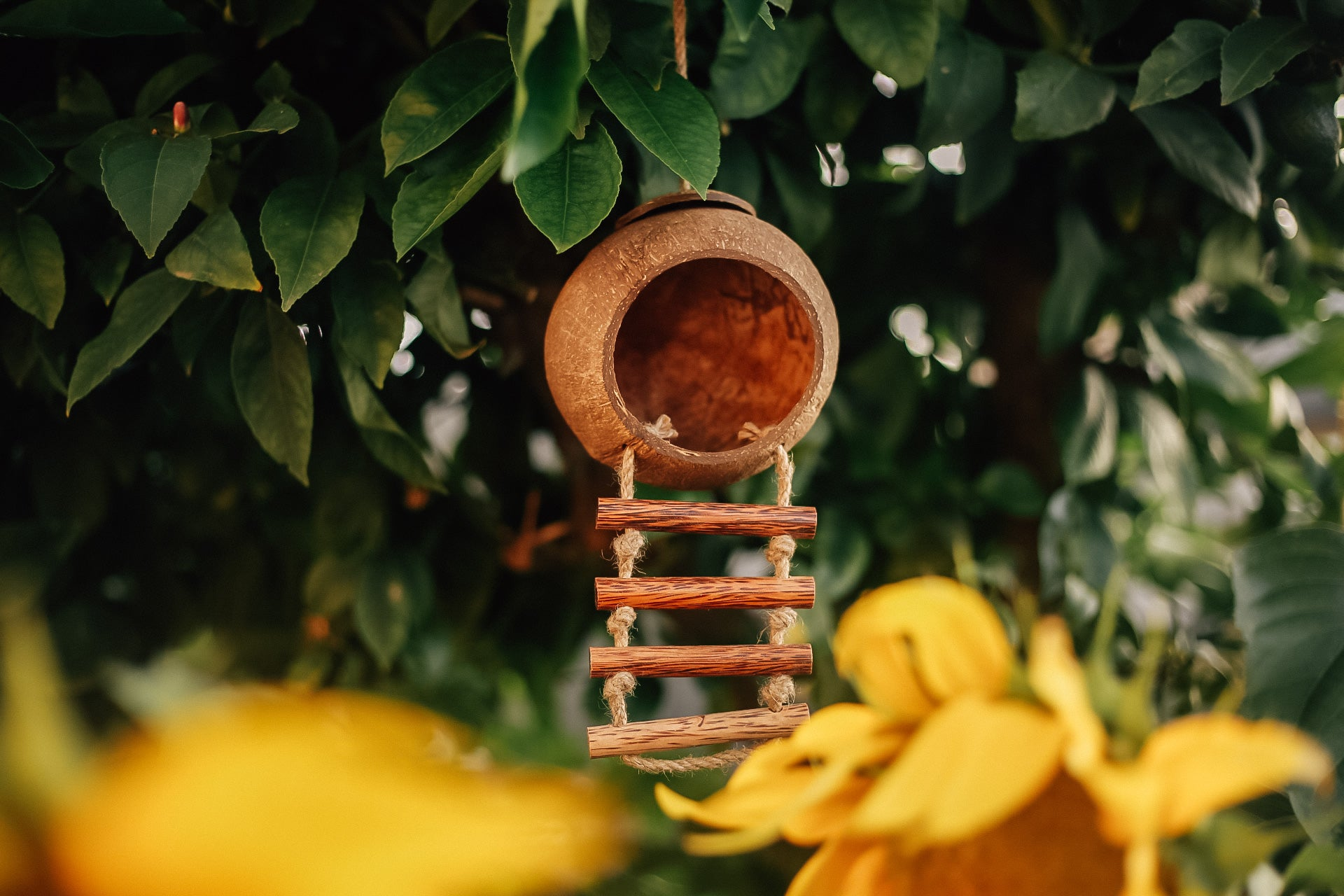Hanging Fairy House by Q Toys