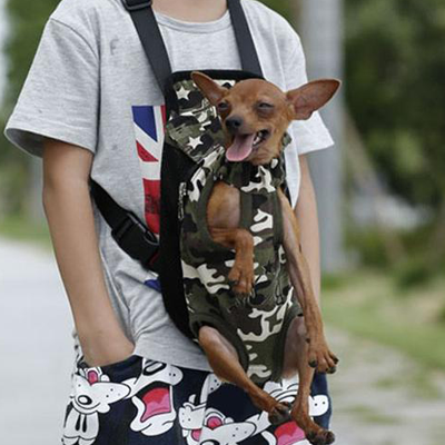 Backpack Chihuahua Carrier