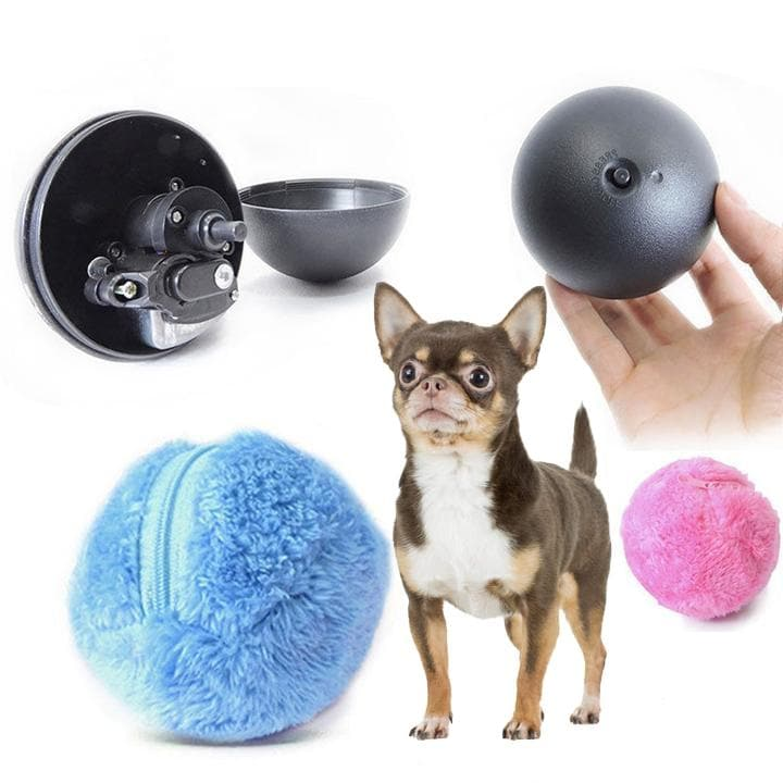 SELF ROLLING INTERACTIVE BALL - Chihuahua We Love