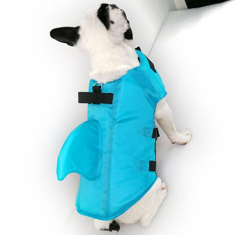 Shark Chihuahua Safety Life Jacket - Chihuahua We Love