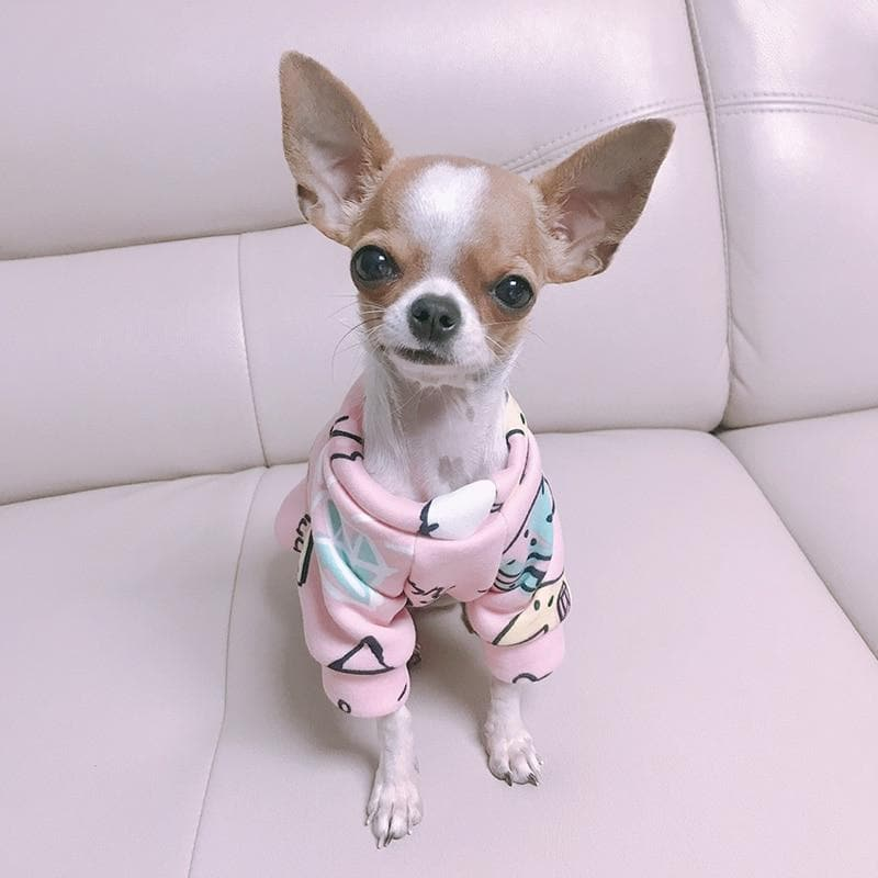 Soft and Leighweight Sweatshirt - Chihuahua We Love
