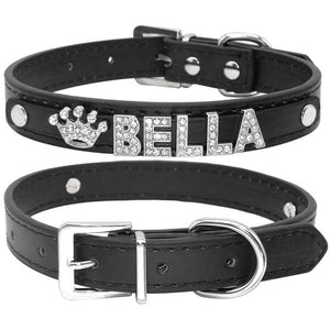 Bling Chihuahua Personalized Collar - Chihuahua We Love