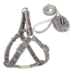 Adjustable Harness and Leash - Chihuahua We Love