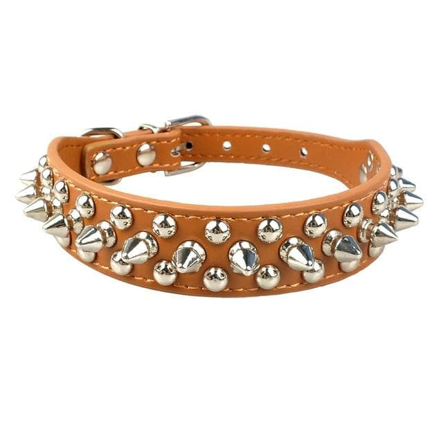 Spiked Leather Chihuahua Collar - Chihuahua We Love