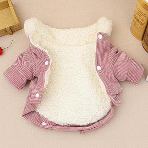 Pink Winter Corduroy Coat - Chihuahua We Love
