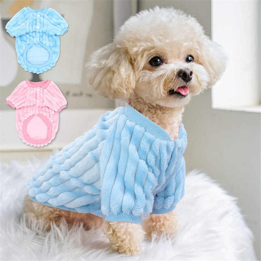 Warm Blue/Pink Winter Sweatshirt - Chihuahua We Love