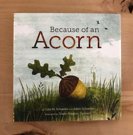 Because of an Acorn | Lola M. Schaefer and Adam Schaefer