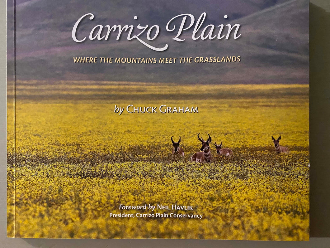 Carrizo Plain | Where the Mountains Meet the Grasslands | Chuck Graham