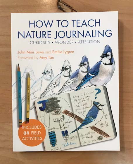 How to Teach Nature Journaling | Curiosity • Wonder • Attention | John Muir Laws and Emilie Lygren