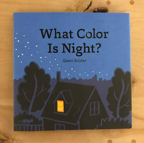 What Color is Night? - Book - Hardbound - Children - Grant Snider