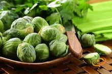 Load image into Gallery viewer, Heirloom Organic Catskill Brussel Sprouts Seeds