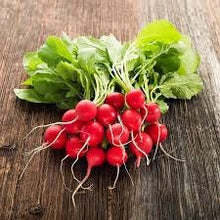 Load image into Gallery viewer, Heirloom Organic Cherry Belle Radish Seeds