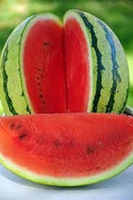Load image into Gallery viewer, Organic Heirloom Jubilee Watermelon Seeds non gmo
