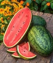 Load image into Gallery viewer, Heirloom Organic Georgia Rattlesnake Watermelon seeds