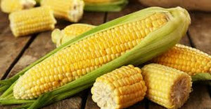 Heirloom Organic Kandy Korn Sweet Corn Seeds