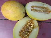 Load image into Gallery viewer, Rare Heirloom Organic Sharlyn Melon Seeds (Aka Pineapple Melon, Ananas Melon, Ananas D'Amerique a Chair Verte)
