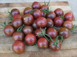 Heirloom Organic Black Cherry Tomato Seeds