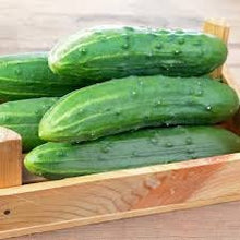 Load image into Gallery viewer, Heirloom Organic Spacemaster Bush-Type Cucumber Seeds