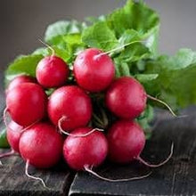 Load image into Gallery viewer, Organic Heirloom Crimson Giant Radish Seeds