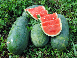 Rare Organic Heirloom Strawberry Watermelon Seeds