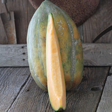 Load image into Gallery viewer, RARE Heirloom Organic Bidwell Casaba Melon Seeds