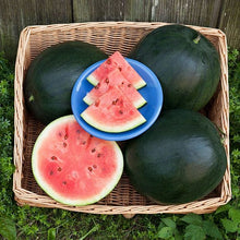 Load image into Gallery viewer, Organic Heirloom Blacktail Mountain Watermelon Seeds