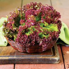 Load image into Gallery viewer, Heirloom Organic New Red Fire Lettuce Seeds