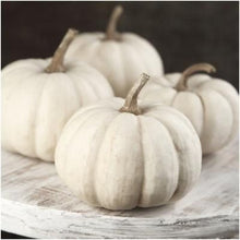Load image into Gallery viewer, Heirloom Organic Baby Boo Pumpkin Seeds