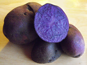 Organic Blue Seed Potato Live Plant Bulbs vegetable seeds rare seeds and live plants