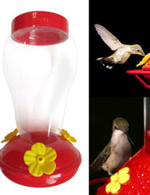 Load image into Gallery viewer, Hummingbird feeder great gift idea!