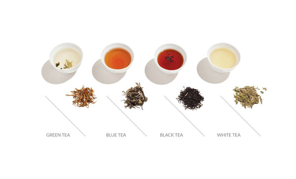 TEA – THE MIRACLE PLANT