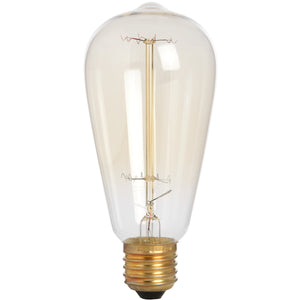 Edison Filament Teardrop Squirrel Cage Bulb