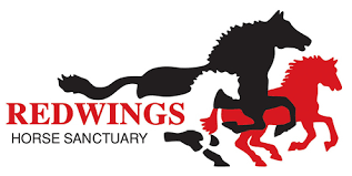 Redwings Horse Sanctuary Charity Logo | Equestrian Giveaways