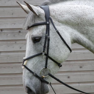 WIN!!! - HENRY JAMES ANATOMICAL Bridle & Reins Worth £225 RRP