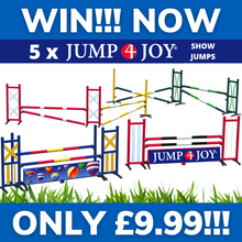 Load image into Gallery viewer, WIN!!! - A SET OF 5 PROFESSIONAL SHOW JUMPS!